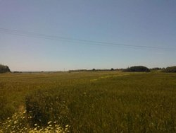 Plot for Sale - Lahania South Rhodes